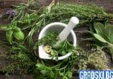 Лечение с билки – как да си помогнем сами – Част 1