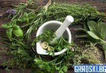Лечение с билки