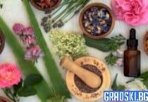 Съвети за употреба на полезни билки