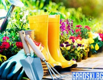 Защо да се занимаваме с градинарство