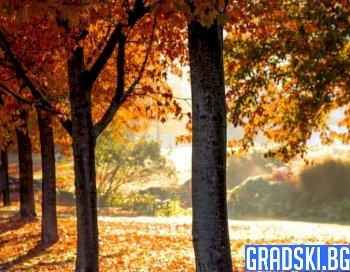 На 23 септември настъпва астрономическата есен