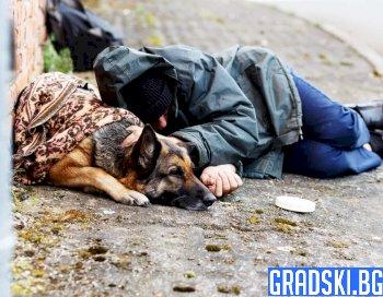 Ще се справи ли София с бездомните
