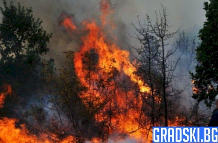 Пожар на четири фронта е обсадил Девин