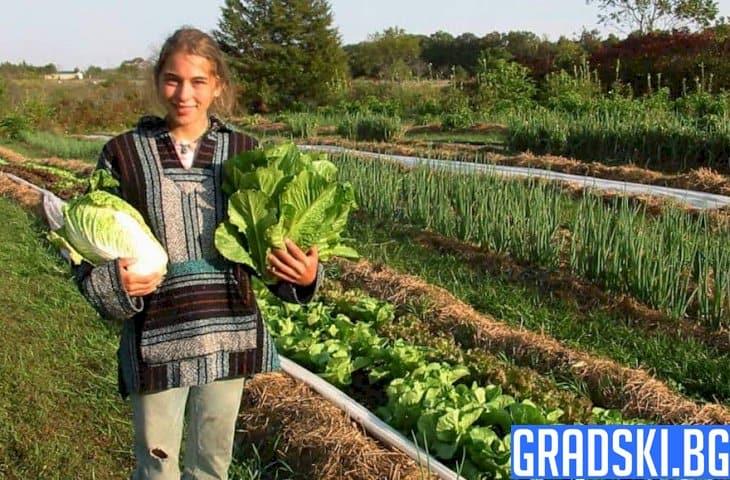 МОН и МЗХГ с нова кампания за младите фермери