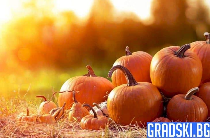 Рецепти с тиква за есента