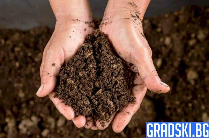 Столична община раздаде на гражданите 1 тон компост безплатно